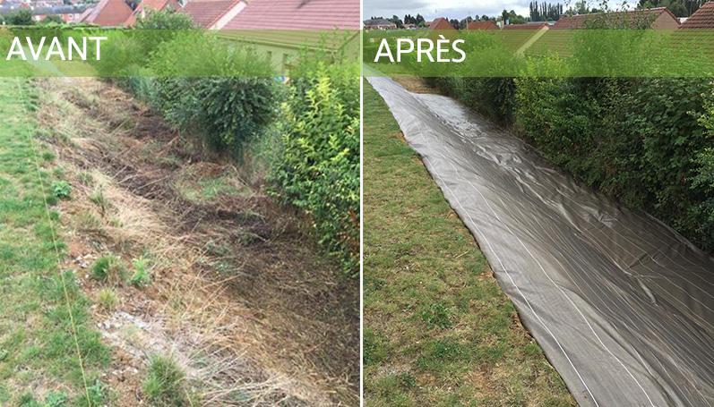 Entretien de jardin sur Hénin-Beaumont, Arras | Tonte et taille de ...