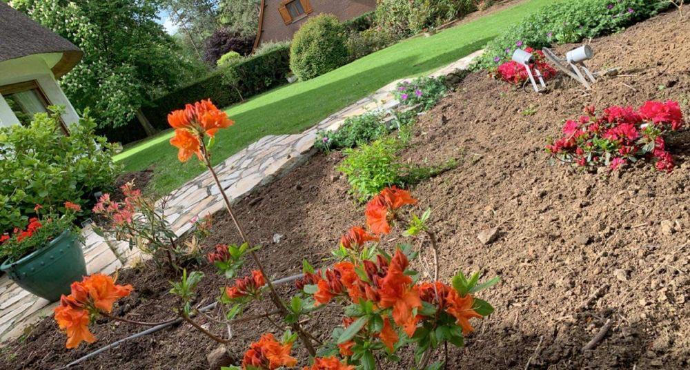 Entretien de jardin Douai